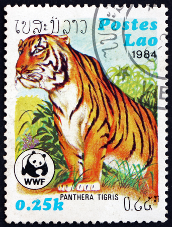 LAOS - CIRCA 1984: a stamp printed in Laos shows tiger, panthera tigris, is the largest cat species, circa 1984