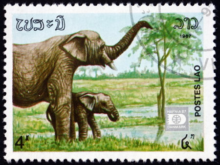LAOS - CIRCA 1987: a stamp printed in Laos shows Indian elephant, elephas maximus indicus, is one of three recognized subspecies of the Asian elephant, circa 1987 에디토리얼