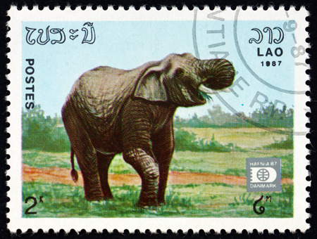 LAOS - CIRCA 1987: a stamp printed in Laos shows Indian elephant, elephas maximus indicus, is one of three recognized subspecies of the Asian elephant, circa 1987 Editorial