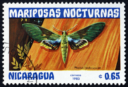 NICARAGUA - CIRCA 1983: a stamp printed in Nicaragua shows gaudy sphinx, pholus labruscae, nocturnal moth, circa 1983 에디토리얼