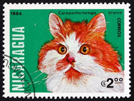 NICARAGUA - CIRCA 1984: a stamp printed in Nicaragua shows tortoiseshell cat, domestic cat, circa 1984 Editorial