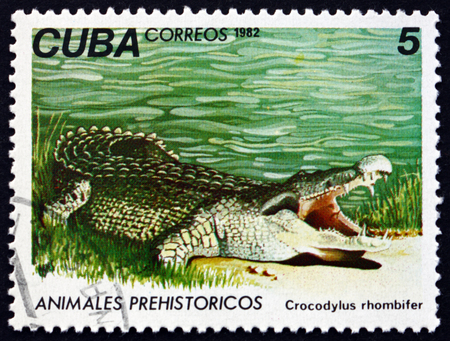 CUBA - CIRCA 1982: a stamp printed in Cuba shows Cuban crocodile, crocodylus rhombifer, is a species of crocodile found only in Cuba, circa 1982