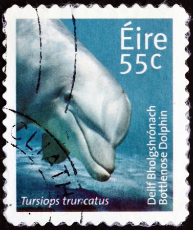 IRELAND - CIRCA 2011: a stamp printed in Ireland shows common bottlenose dolphin, tursiops truncatus, sea animal, circa 2011
