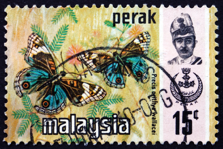 MALAYSIA - CIRCA 1971: a stamp printed in Malaysia shows Blue Pansy, Junonia Orithya, Butterfly, circa 1971