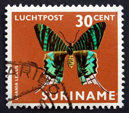 SURINAM - VERS 1972 : un timbre imprimé au Suriname montre urania à bandes vertes, urania leilus, papillon, vers 1972
