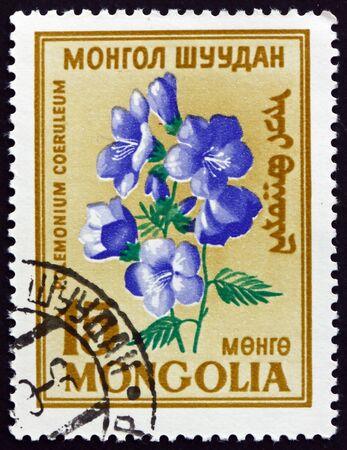 MONGOLIA - CIRCA 1960: a stamp printed in Mongolia shows Greek valerian, polemonium caeruleum, is a flowering plant, circa 1960
