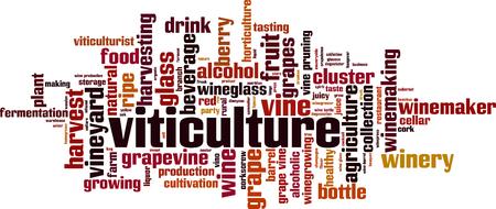 Concepto de nube de word de viticultura. Ilustración vectorial Ilustración de vector