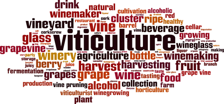 Viticulture word cloud concept. Vector illustration