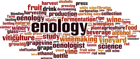 Enology word cloud concept. Collage made of words about enology. Vector illustration Vectores