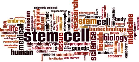 Stem cell word cloud concept. Collage made of words about stem cell. Vector illustration