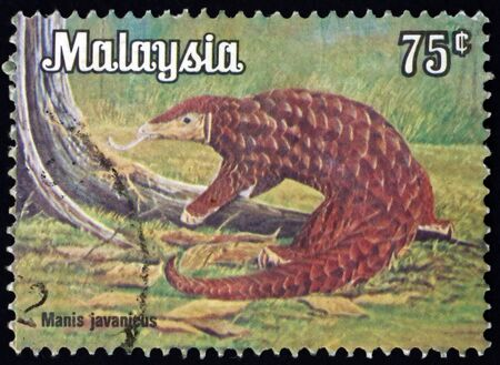 MALAYSIA - CIRCA 1979: a stamp printed in Malaysia shows Malayan pangolin, manis javanicus, is a species of pangolin, circa 1979