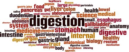 Digestion word cloud concept. Collage made of words about digestion. Vector illustration