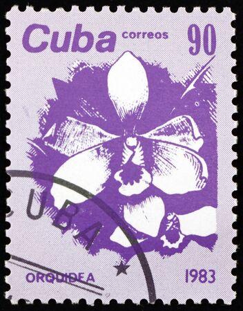 CUBA - CIRCA 1983: a stamp printed in Cuba shows orchid, flower, circa 1983