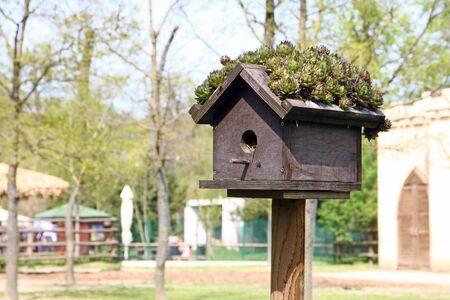 Small wooden birdhouse in the garden