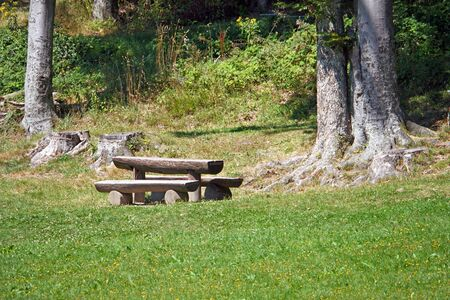 Wooden table and benches on the edge of the forest in the mountain