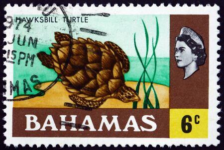 BAHAMAS - VERS 1971 : un timbre imprimé aux Bahamas montre la tortue imbriquée (eretmochelys imbricata), est une tortue de mer, un poisson, vers 1971 Éditoriale