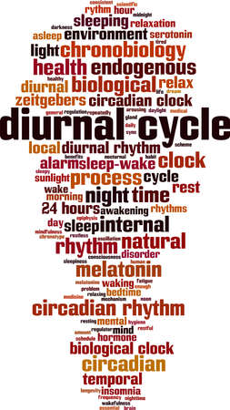 Diurnal cycle word cloud concept. Collage made of words about diurnal cycle. Vector illustration 일러스트