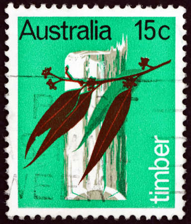 AUSTRALIA - CIRCA 1969: a stamp printed in Australia shows eucalyptus trunk and leaf, timber is Australian primary industry, circa 1969