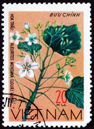 VIETNAM - CIRCA 1977: a stamp printed in Vietnam shows mu oil tree, aleurites montana, is a medium-sized deciduous tree native to Southeast Asia, circa 1977