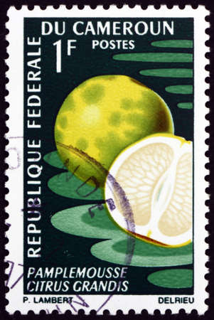 CAMEROON - CIRCA 1967: a stamp printed in Cameroon shows pomelo, citrus grandis, is the largest citrus fruit native to Southeast Asia, circa 1967