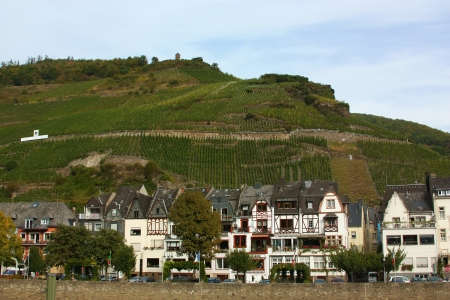 The Mosel valley is one of the most beautiful parts of Germany  On both sides of the river, romantic castles tower over endless vineyards, where excellent white grapes are grown photo