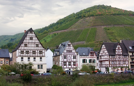 The Mosel valley is one of the most beautiful parts of Germany. On both sides of the river, romantic castles tower over endless vineyards, where excellent white grapes are grown photo