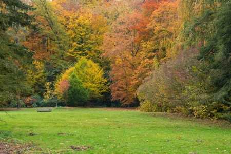 karlovy: Autumn park in Karlovy Vary  Stock Photo