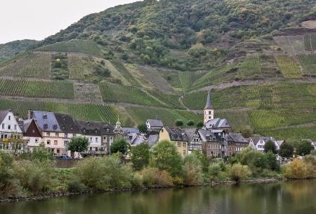 Das Moseltal ist eine der schönsten Gegenden von Deutschland. Auf beiden Seiten des Flusses, romantische Burgen Turm über endlosen Weinbergen, wo ausgezeichnete weiße Trauben angebaut werden