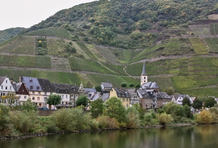 over grown: The Mosel valley is one of the most beautiful parts of Germany. On both sides of the river, romantic castles tower over endless vineyards, where excellent white grapes are grown Stock Photo
