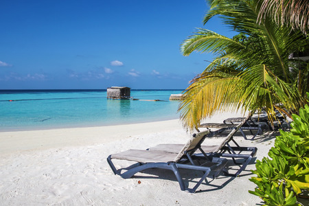 deck chairs: Deck chairs under palm trees on a tropical beach, Maldives Stock Photo