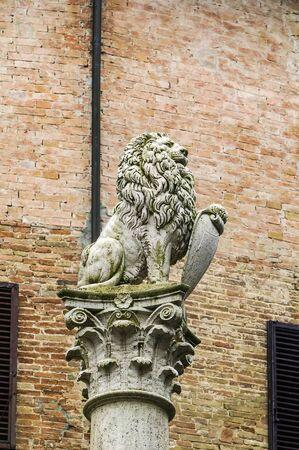 montepulciano: Colonna del marzocco with leon in montepulciano, Italy