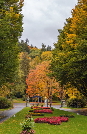 greengrass: flowerbed in autumn in the park in Karlovy Vary, Czech republic