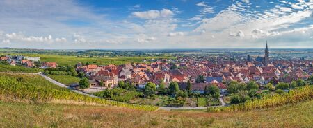 ville: Panoramic view of  Dambach la Ville from the hill with vineyard, Alsace, France