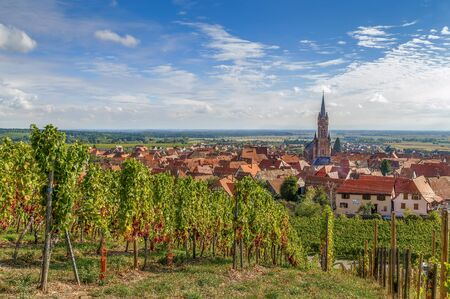 ville: View of  Dambach la Ville from the hill with vineyard, Alsace, France