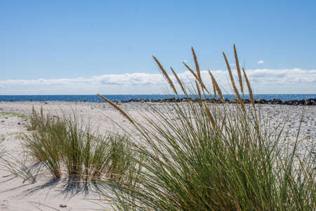 On the beach of Heligoland Standard-Bild - 107465471