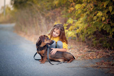 A girl walks through an autumn flogging with a dachshund dog. The child is petting his dog. Children and animals