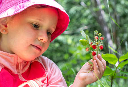 A girl in panama holds in her hand a bouquet of wild berries, wild strawberries. The baby is smiling. Summer day Фото со стока