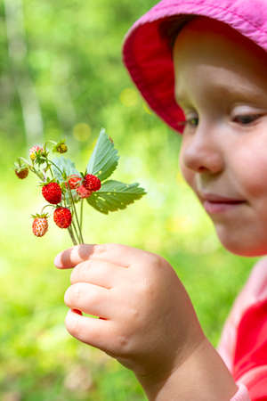 Caucasian girl picking wild strawberries. The baby is smiling. Summer day