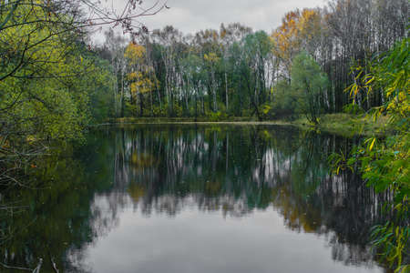 Reflection of trees in a forest lake on a gloomy autumn day Stock Photo