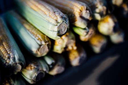 fresh corn is made on the grill Zdjęcie Seryjne