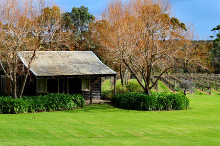 ぶどう畑のマーガレット川-西オーストラリア 写真素材