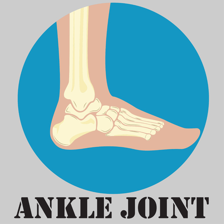 navicular: Human ankle joint emblem, medicine clinic symbol design, joints diagnostics center, Illustration