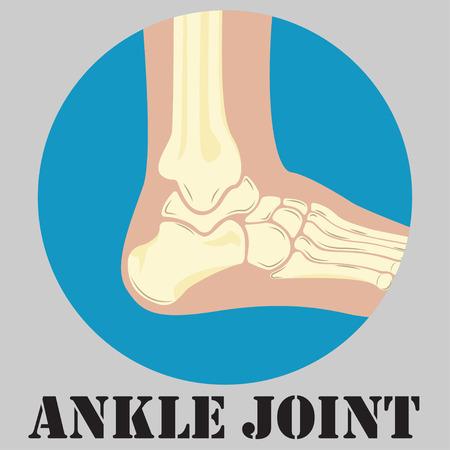 Human ankle joint emblem, medicine clinic symbol design, joints diagnostics center, Illustration