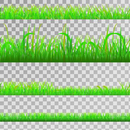 Seamless green gras set, seamless strip of green grass set on transparent background, vector
