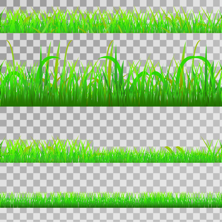 Seamless green gras set, seamless strip of green grass set on transparent background, vector
