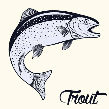 Monochrome illustration of jumping trout isolated on white background, vector Ilustração