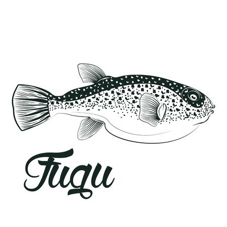 Monocromo ilustración de los peces fugu aislado sobre fondo blanco, vector Vectores
