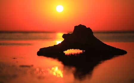 beautiful Red sea sunrise during  low tide time  photo