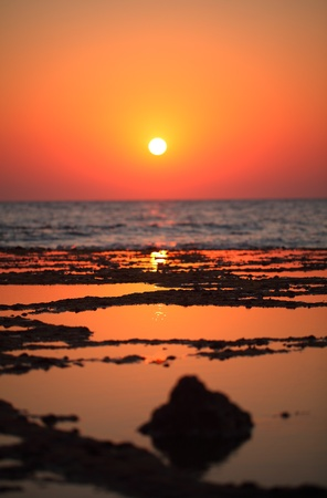 beautiful Red sea sunrise during  low tide time