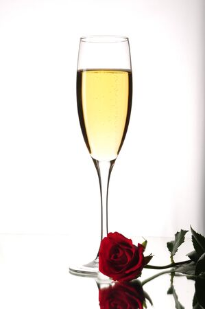 glass, champagne, rose photo
